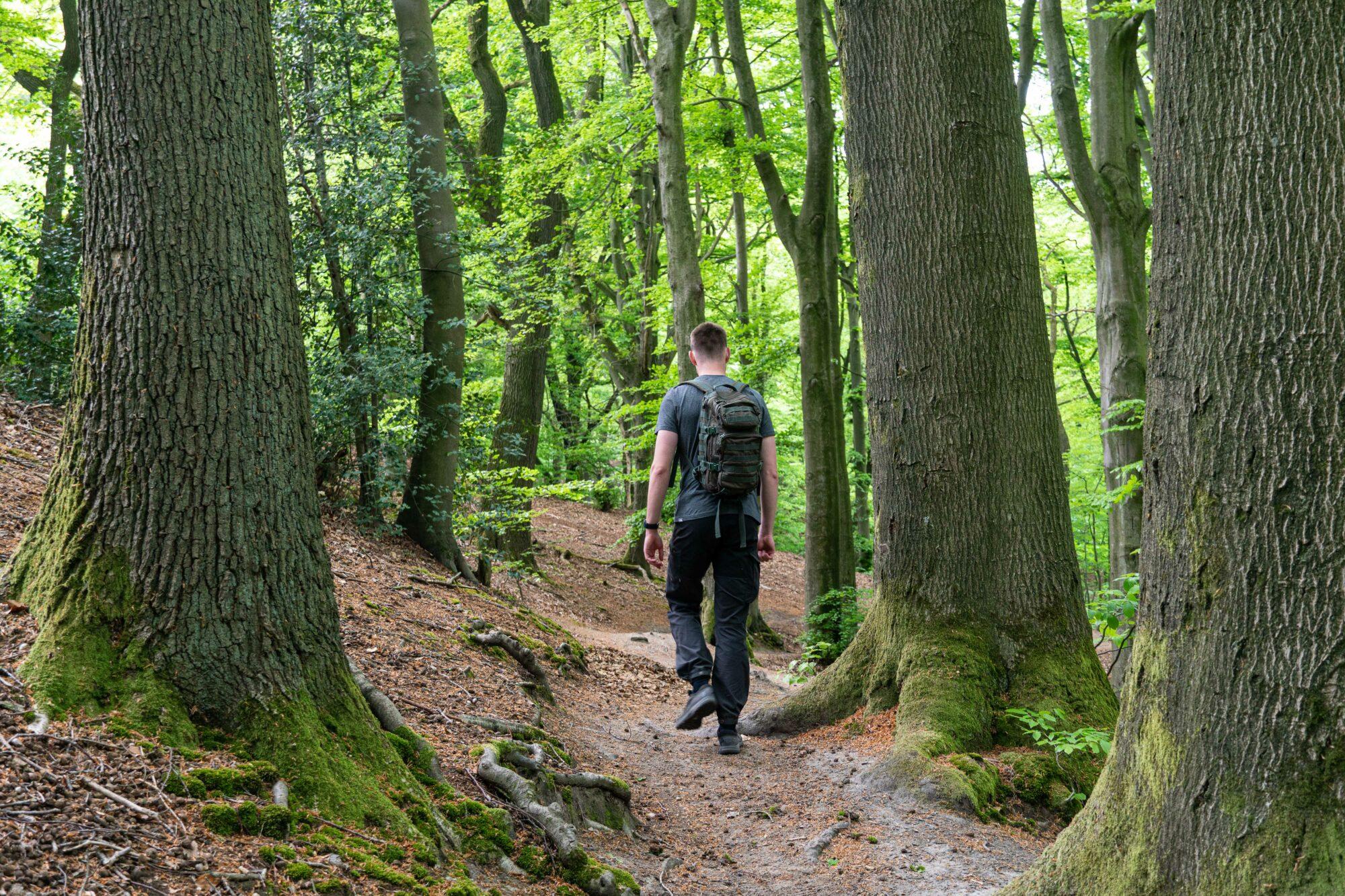 wandeling over de natuurroute n-70